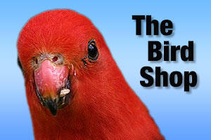 Pet supplies for birds