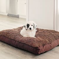 Dirty Dog Rectangle Dog Bed Chocolate