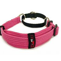 Black Dog Whippet Collar